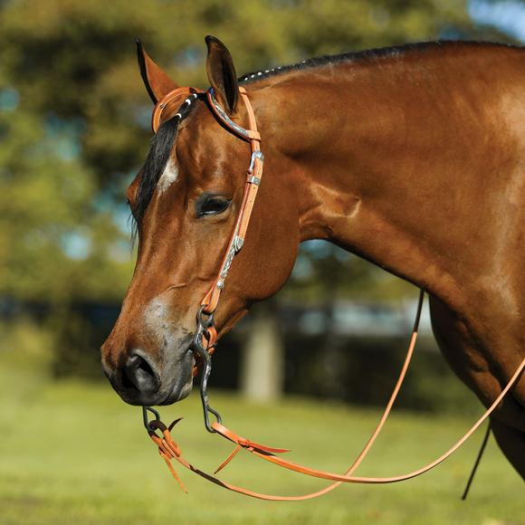 Raleigh Two Ear Headstall