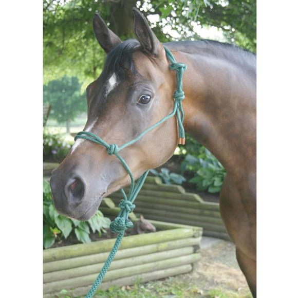 Dura-Tech® Rope Halter And Lead