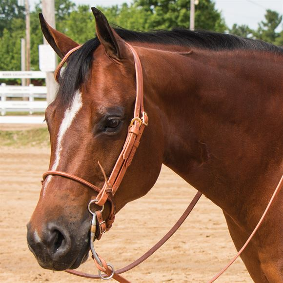 Billy Royal® Hermann Oak Leather Single Adjustment One Ear Headstall