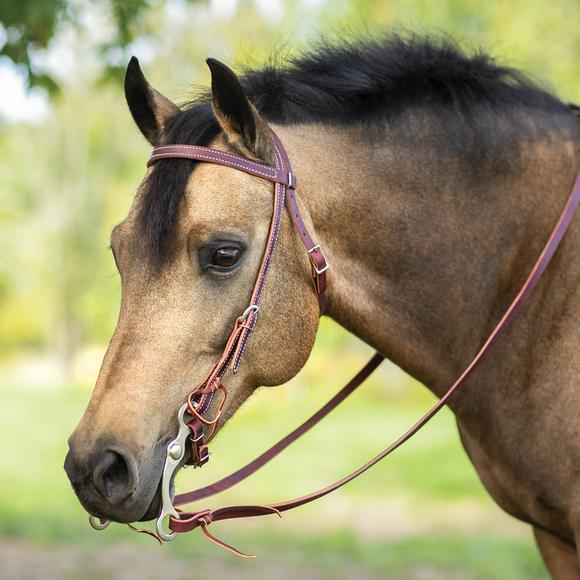 Weaver Leather® Latigo Leather Pony Browband Bridle Set