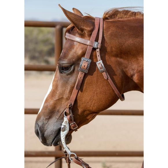 Billy Royal® Oiled Hermann Oak Horseshoe Brand Buckle Browband Headstall