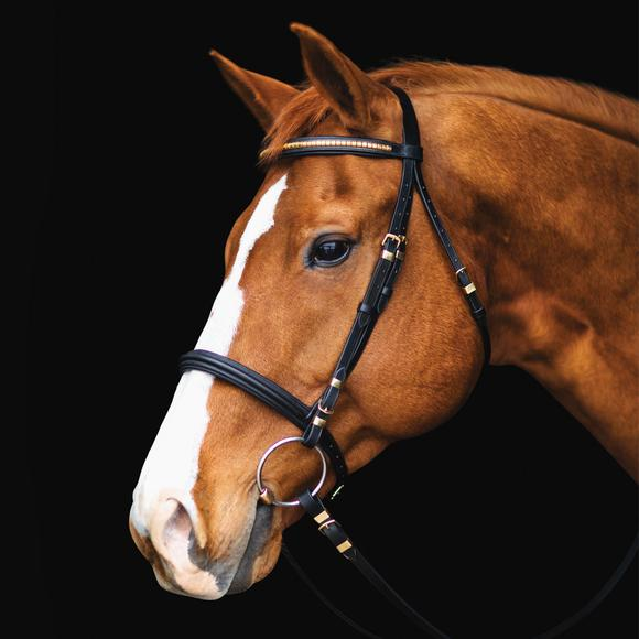Premier Black Clincher Bridle