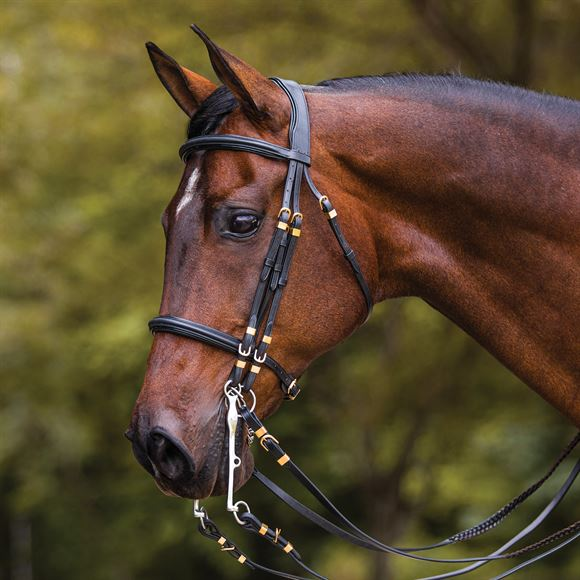 Joseph Sterling Show Hack Bridle