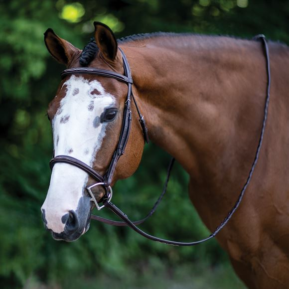 Ovation® Fancy Stitched Comfort Crown Padded Bridle