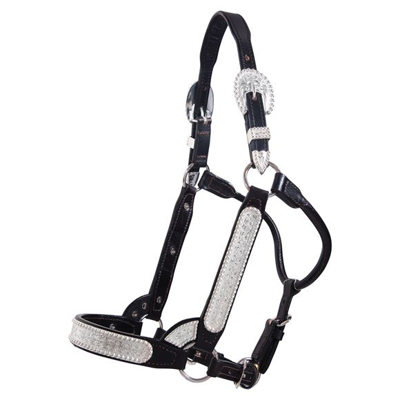 Billy Royal® SP Elite Classic Show Halter - Limited Edition