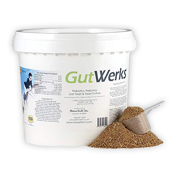 GutWerks™ Digestive Supplement