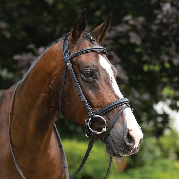 Pinnacle Comfort Plus® Dressage Bridle