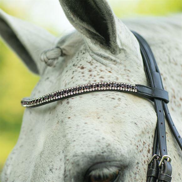 Joseph Sterling® Regal Curved Crystal Browband