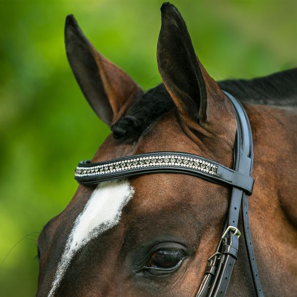 Joseph Sterling® Regal Padded Curved Crystal Browband
