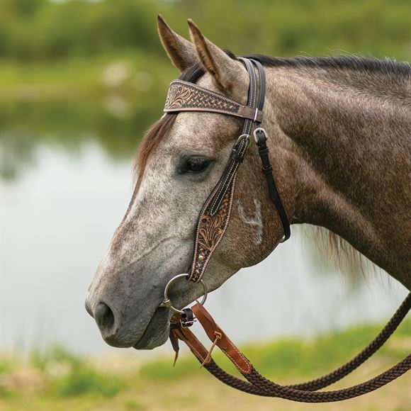 Double S Reno Browband Headstall