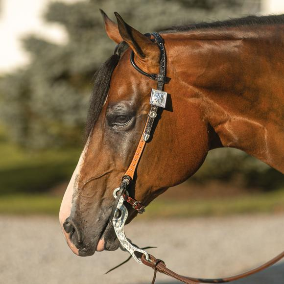 Billy Royal® Phoenix Two Ear Headstall