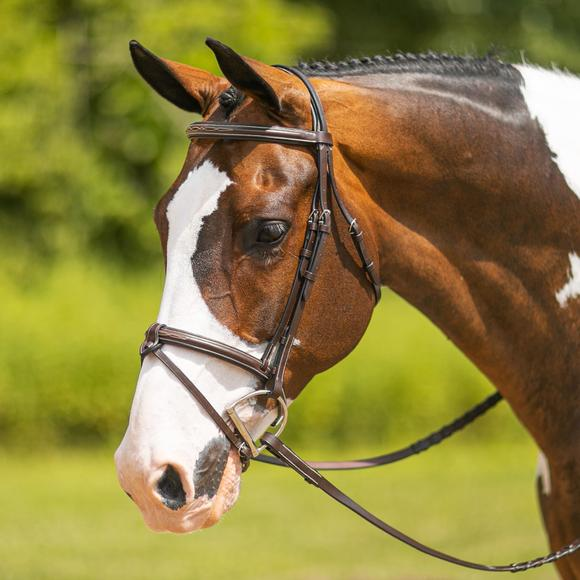 Pinnacle Comfort Plus® Hunter Bridle with Flash Attachment