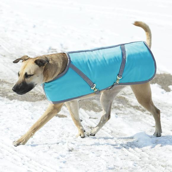 Dura-Tech® Limited Edition 1680 Waterproof Insulated Dog Coat