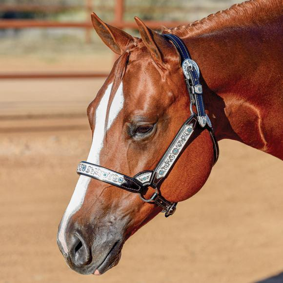Billy Royal® Grand Slam II Classic Show Halter