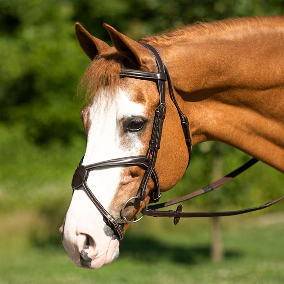 Joseph Sterling ® EVX Figure 8 Bridle
