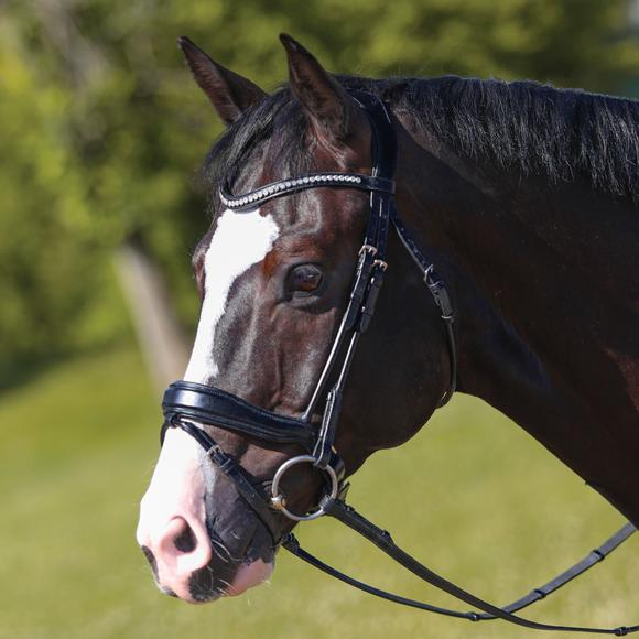 Joseph Sterling® Anatomic Snaffle Dressage Bridle with Flash