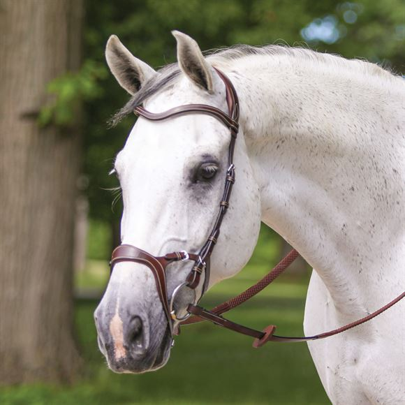 Joseph Sterling® Anatomic Poll Relief Monocrown English Bridle