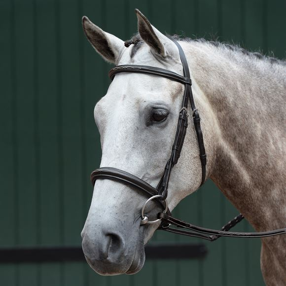 Collegiate® Essential Padded Raised Fancy Stitched Cavesson Bridle