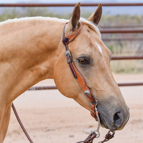Double S Two-Tone Studded One Ear Headstall