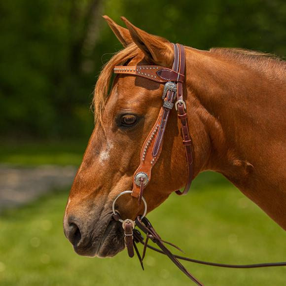 Double S Two-Tone Studded Browband Headstall
