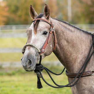 Billy Royal® Bosal Set with Futurity Headstallimage