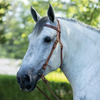 Billy Royal® Draft Horse Harness Leather Headstallimage