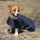 Dura-Tech® Channel Quilted Dog Blanket - XXS, XS, SM13257_navy.jpg image
