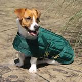 Dura-Tech® Channel Quilted Dog Coat - SM/MD, MD13258_green.jpg image