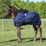 StormShield® Expandable Foal Turnouts
