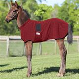 Fleece Foal Warmer