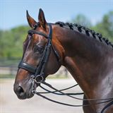 Joseph Sterling Conversion Dressage Bridle with Patent Beading