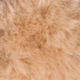 Merino Sheepskin 4pc Halter Set