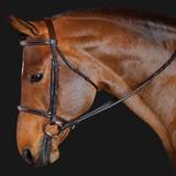 M. Toulouse Standard Hunter Bridle40756_chocolate.jpg image