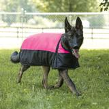 Dura-Tech Insulated Waterproof Reflective Dog Coat
