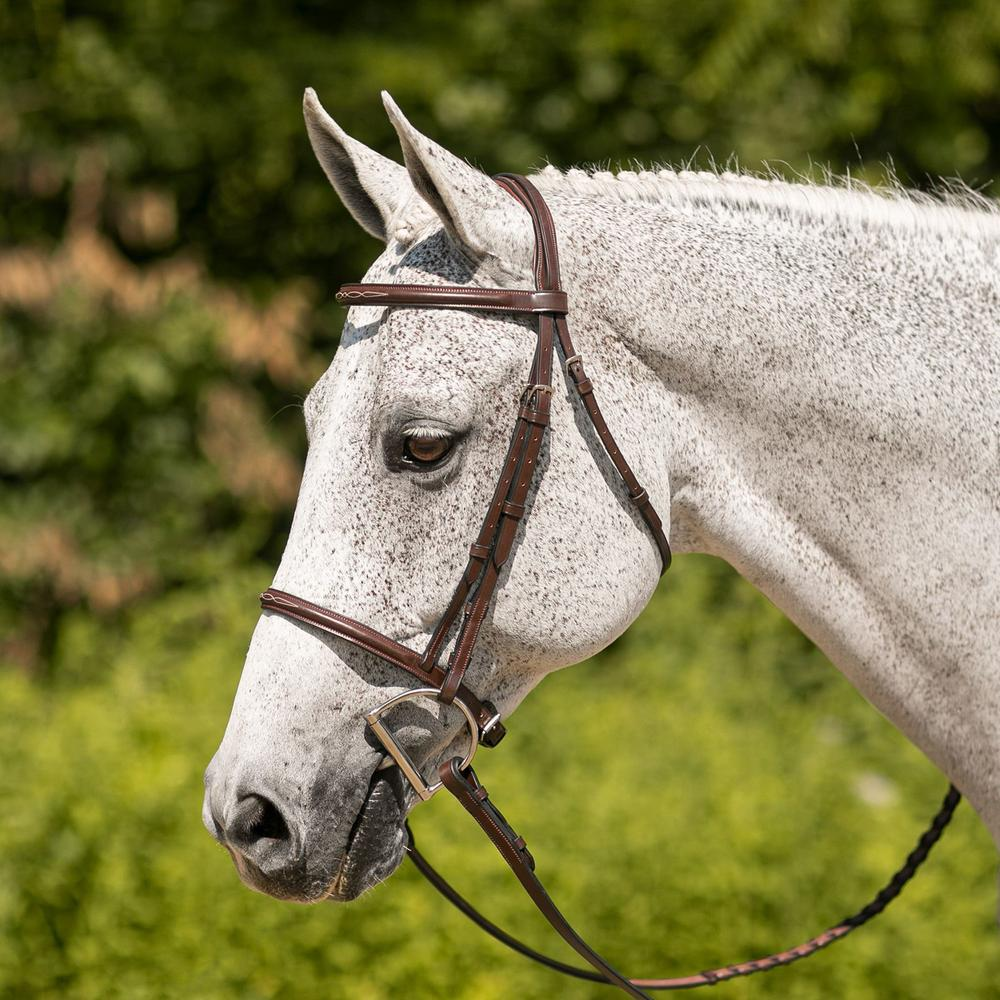 Joseph Sterling® Fancy Stitched Raised Bridle