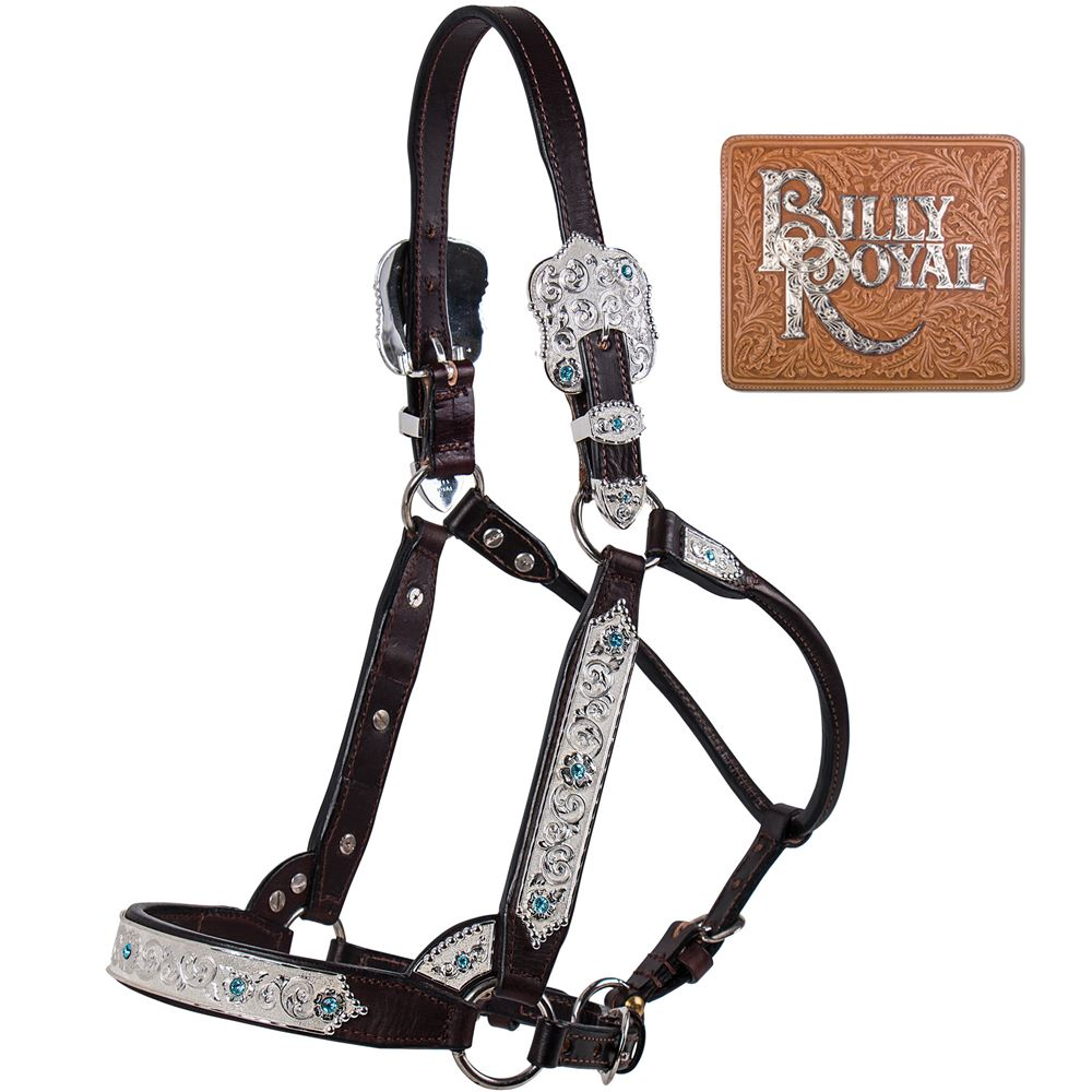 Billy Royal® Fort Worth Supreme Show Halter