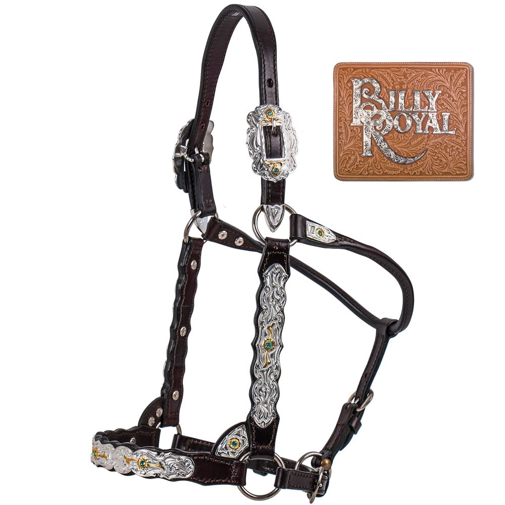 Billy Royal® Congress Miss Classic Show Halter