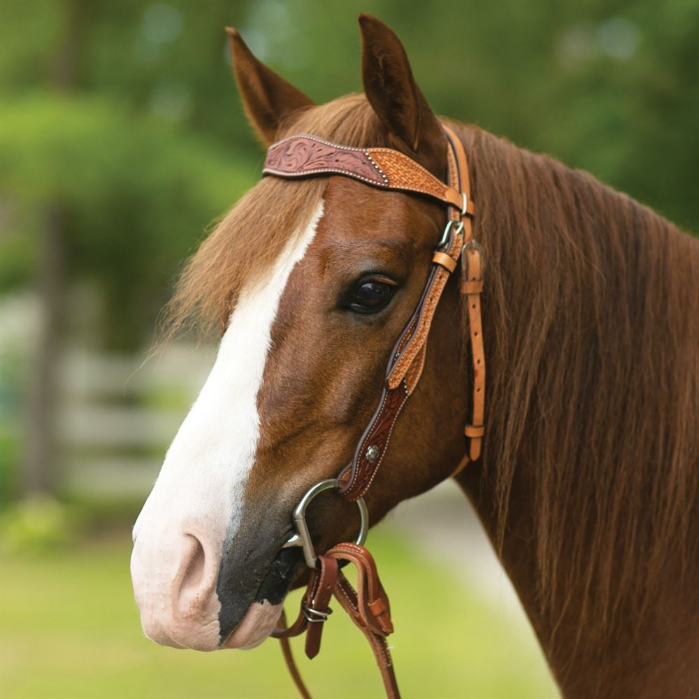 Double S Double Tooled Browband Bridle