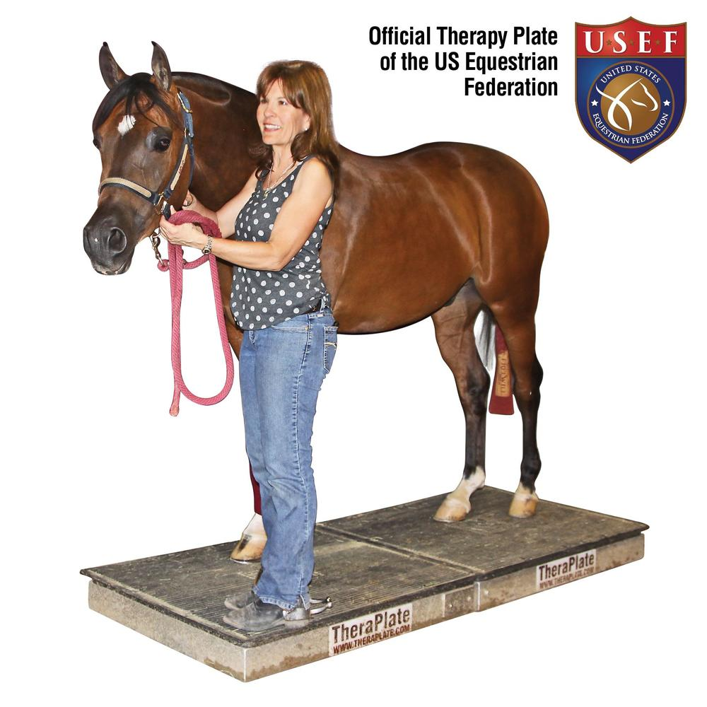 TheraPlate - Equine