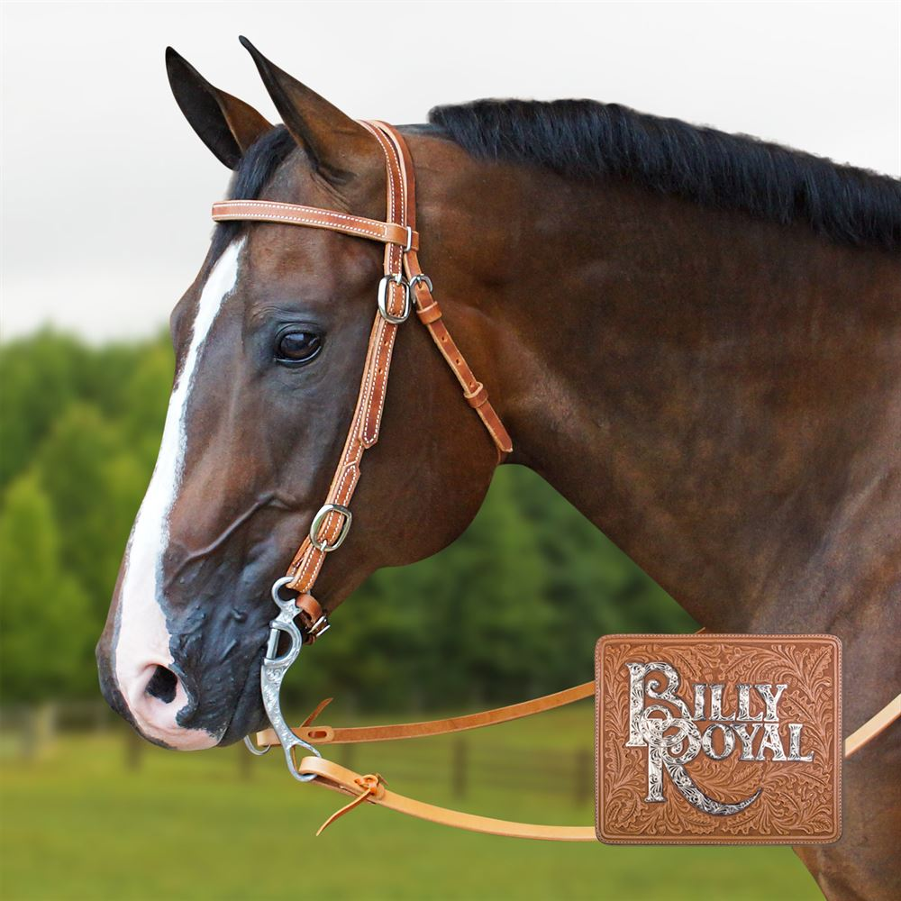 Billy Royal® Browband Buckle Training Set