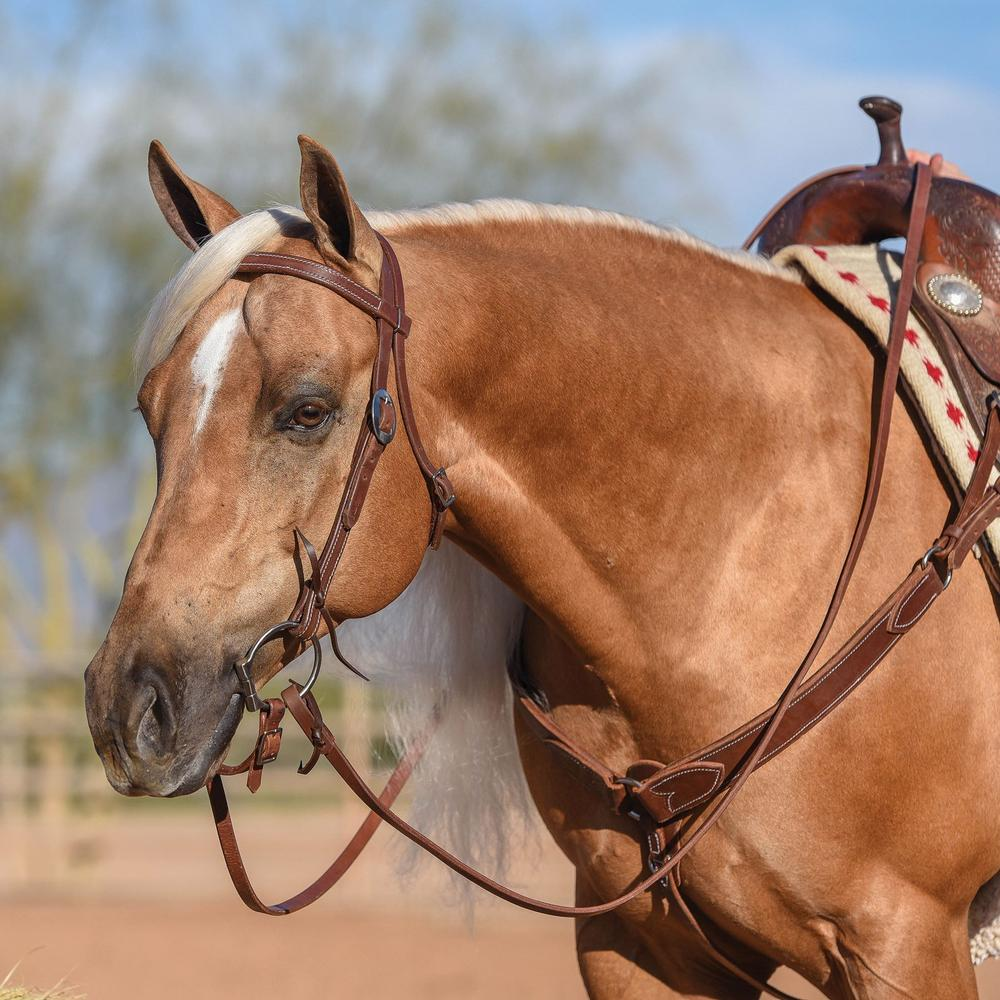 Billy Royal® Oiled Hermann Oak Leather Browband Headstall