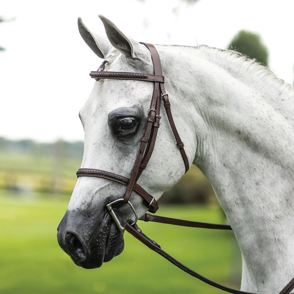 Pinnacle Raised Braided Hunter Bridle