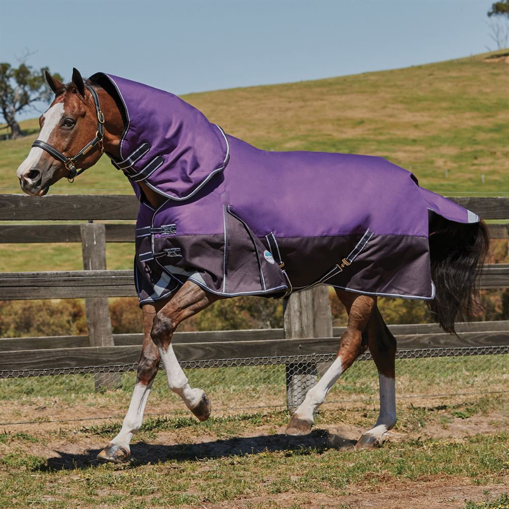 WeatherBeeta® ComFiTec™ Plus Dynamic Detach-A-Neck Lite Turnout Sheet