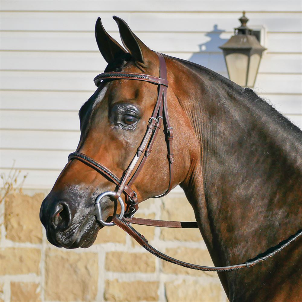 Joseph Sterling® Braided Hunter Bridle with Drawtite Caveson