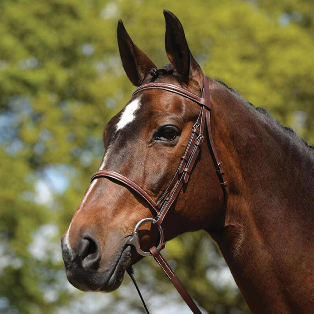 Kincade® Raised Fancy Stitched Bridle