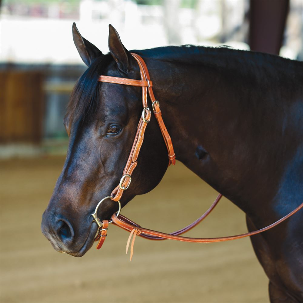 Double S Latigo Lined Browband Headstall with Buckle Cheek