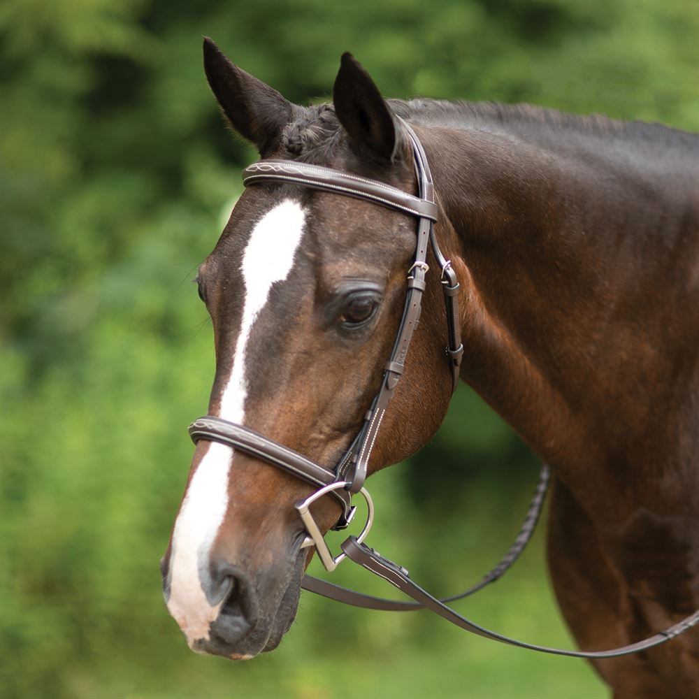 Pinnacle Comfort Plus® Hunter Bridle