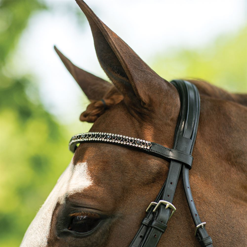 Joseph Sterling® Regal Straight Crystal Browband