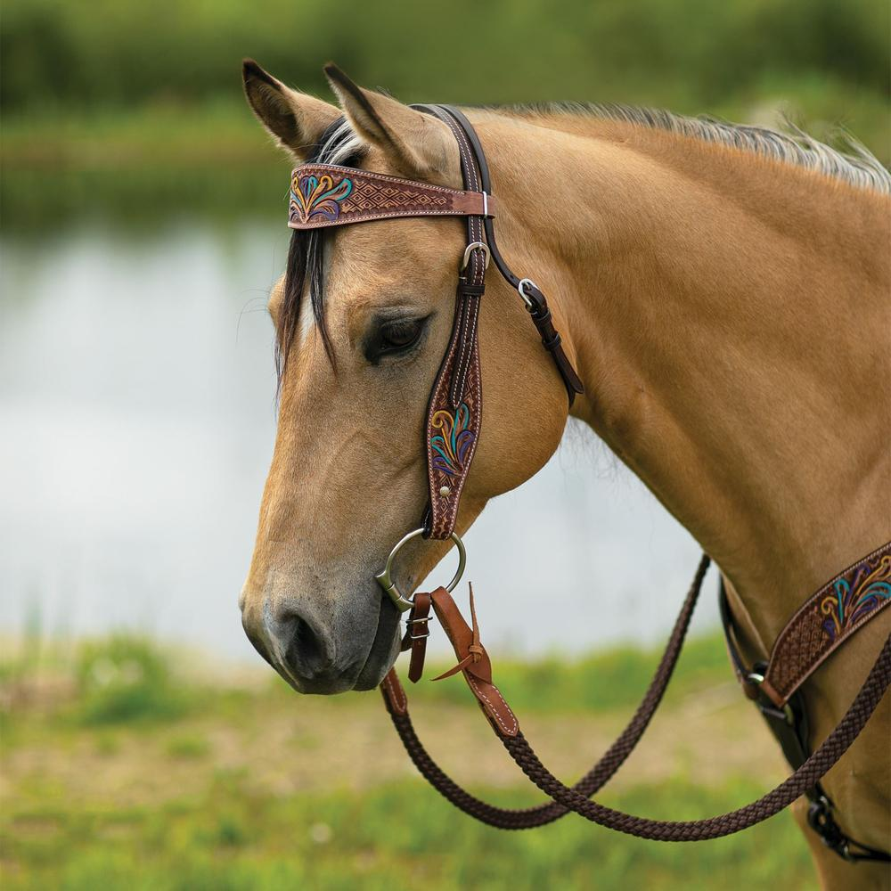 Double S Painted Feather Browband Headstall
