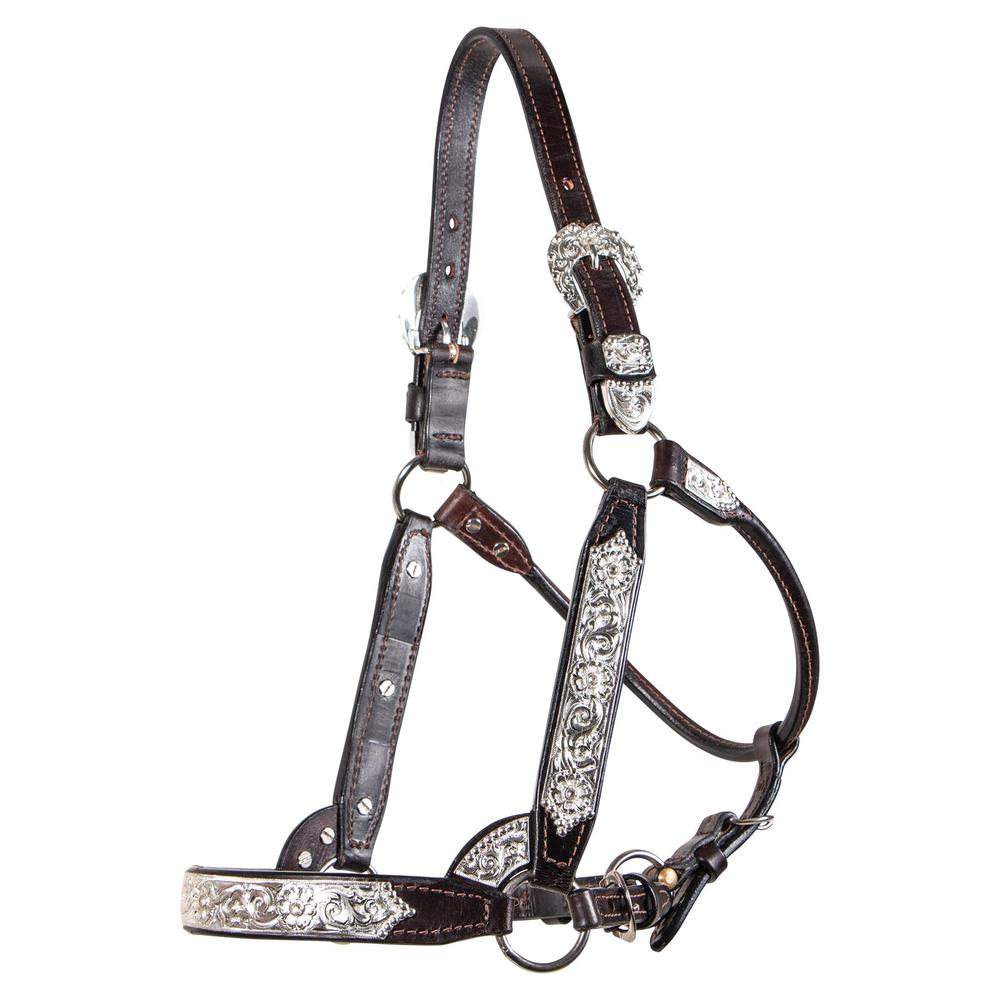 Billy Royal® Madix Silver Show Halter